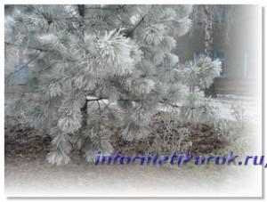 Зимнее утро в Донецке 31 декабря